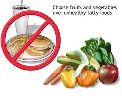 Lose Weight Diets