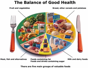 Well Balanced Meal Chart